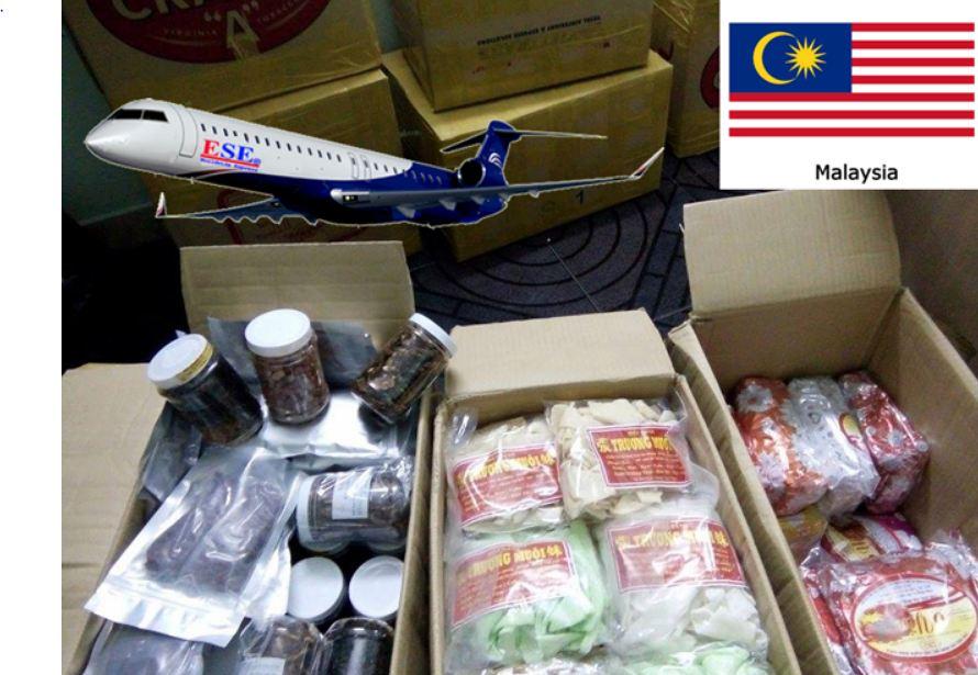 Gửi thực phẩm đi Malaysia giá rẻ