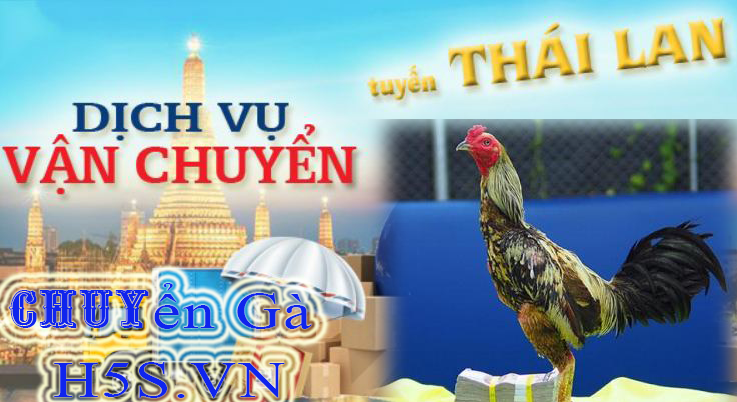 Vận chuyển gà từ Thái Lan về Việt Nam